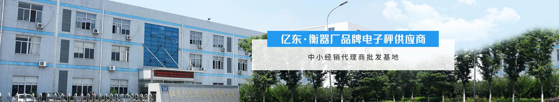 亿东 --衡器厂品牌电子秤供应商