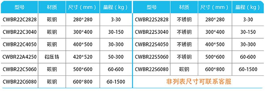 高精度计数台秤-CWBR22产品参数